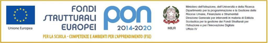 logo PON FSE